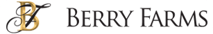 Chiropractic Berry Farms Logo